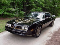 1975 Pontiac Trans Am Overview