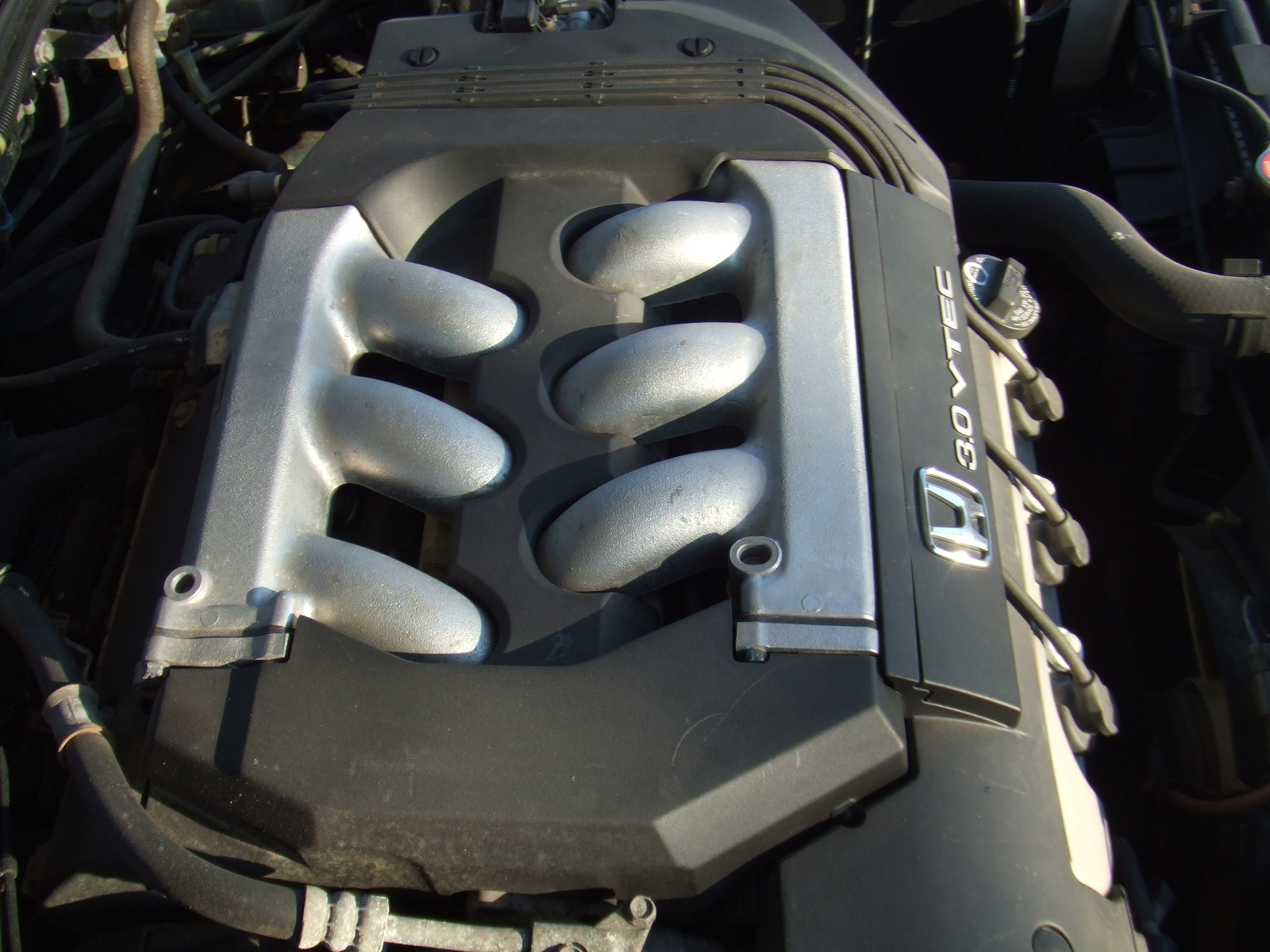 1998 Honda Accord EX V6, 1998 Honda Accord 4 Dr EX V6 Sedan picture, engine