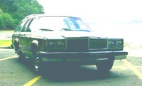 1979 Ford LTD picture, exterior
