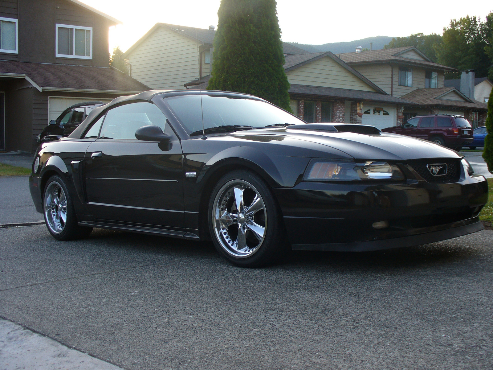 08 ford mustang gt specs car autos gallery. Black Bedroom Furniture Sets. Home Design Ideas
