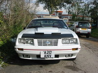 Picture of 1984 Ford Mustang GT350 Coupe RWD, exterior, gallery_worthy