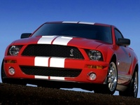 2004 Ford Mustang SVT Cobra picture, exterior