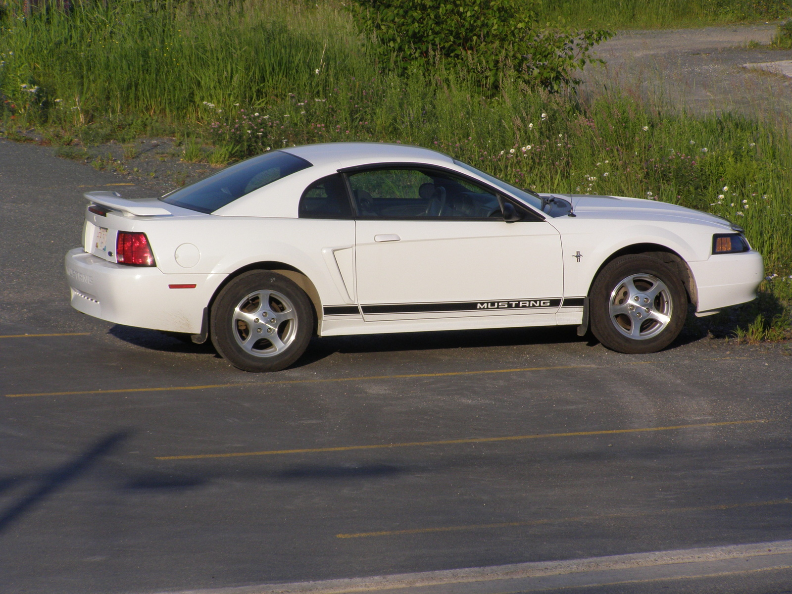 Picture Of 2002 Ford Mustang Base Exterior