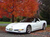 1999 Chevrolet Corvette Hatchback, 1999 Chevrolet Corvette 2 Dr STD Hatchback picture, exterior
