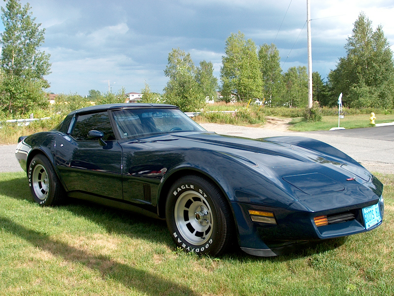 1981 Chevrolet Corvette Base, 1981 Chevrolet Corvette Coupe picture, exterior