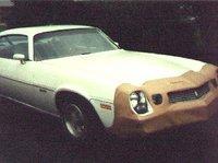 Picture of 1981 Chevrolet Camaro, exterior, gallery_worthy