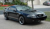 2004 Ford Mustang GT Deluxe Convertible picture, exterior