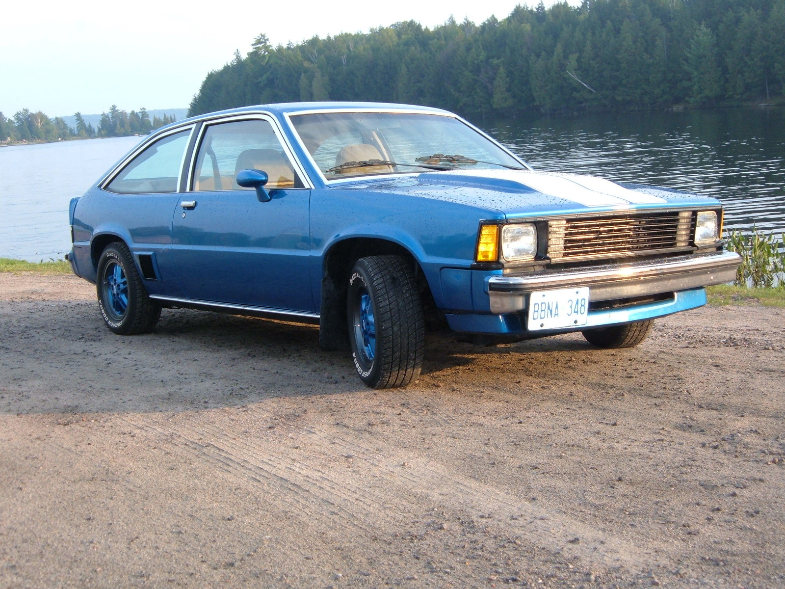 1980 Chevrolet Citation picture