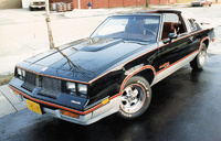 Picture of 1984 Oldsmobile 442, exterior