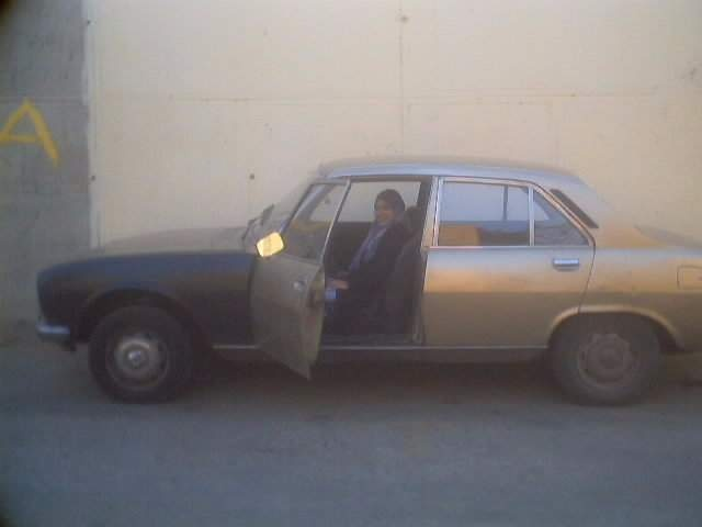 Picture of 1978 Peugeot 504, exterior