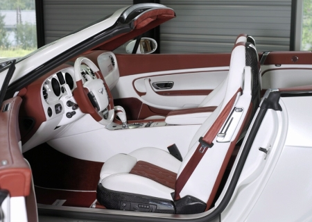 2008 Bentley Continental GT Speed picture, interior