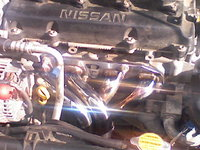 Picture of 2002 Nissan Sentra SE-R Spec V, engine, gallery_worthy