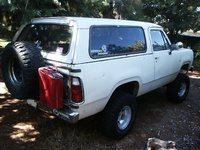 Picture of 1980 Plymouth Trailduster, exterior, gallery_worthy