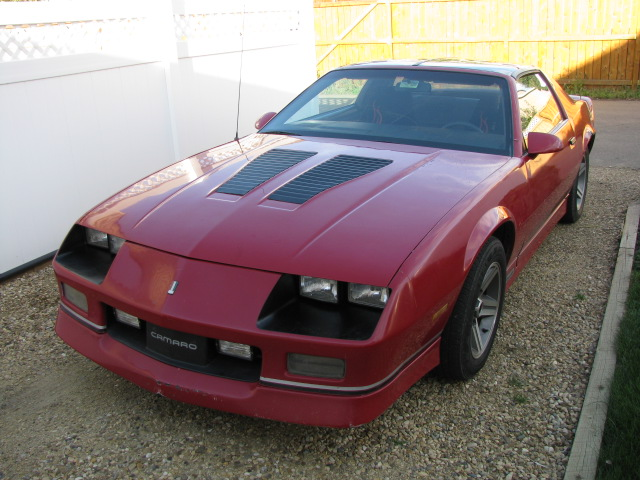 Picture of 1985 Chevrolet Camaro IROC Z