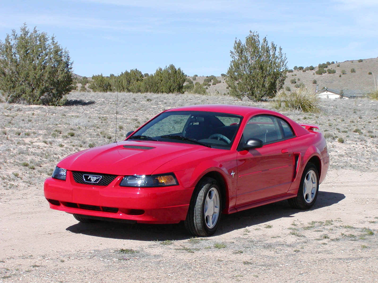 2002 Ford Mustang Exterior Pictures Cargurus