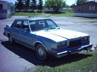 Picture of 1981 Dodge Diplomat