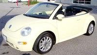 Picture of 2004 Volkswagen Beetle, exterior, gallery_worthy