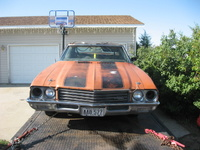 Picture of 1971 Buick Skylark, exterior