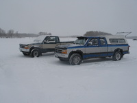 1993 Dodge Dakota Picture Gallery