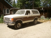 1988 Ford Bronco picture, exterior