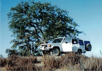 1990 Isuzu Trooper 4 Dr S 4WD SUV picture, exterior