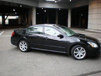 Picture of 2008 Nissan Maxima SE, exterior, gallery_worthy
