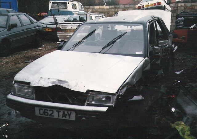Picture of 1986 Austin Montego