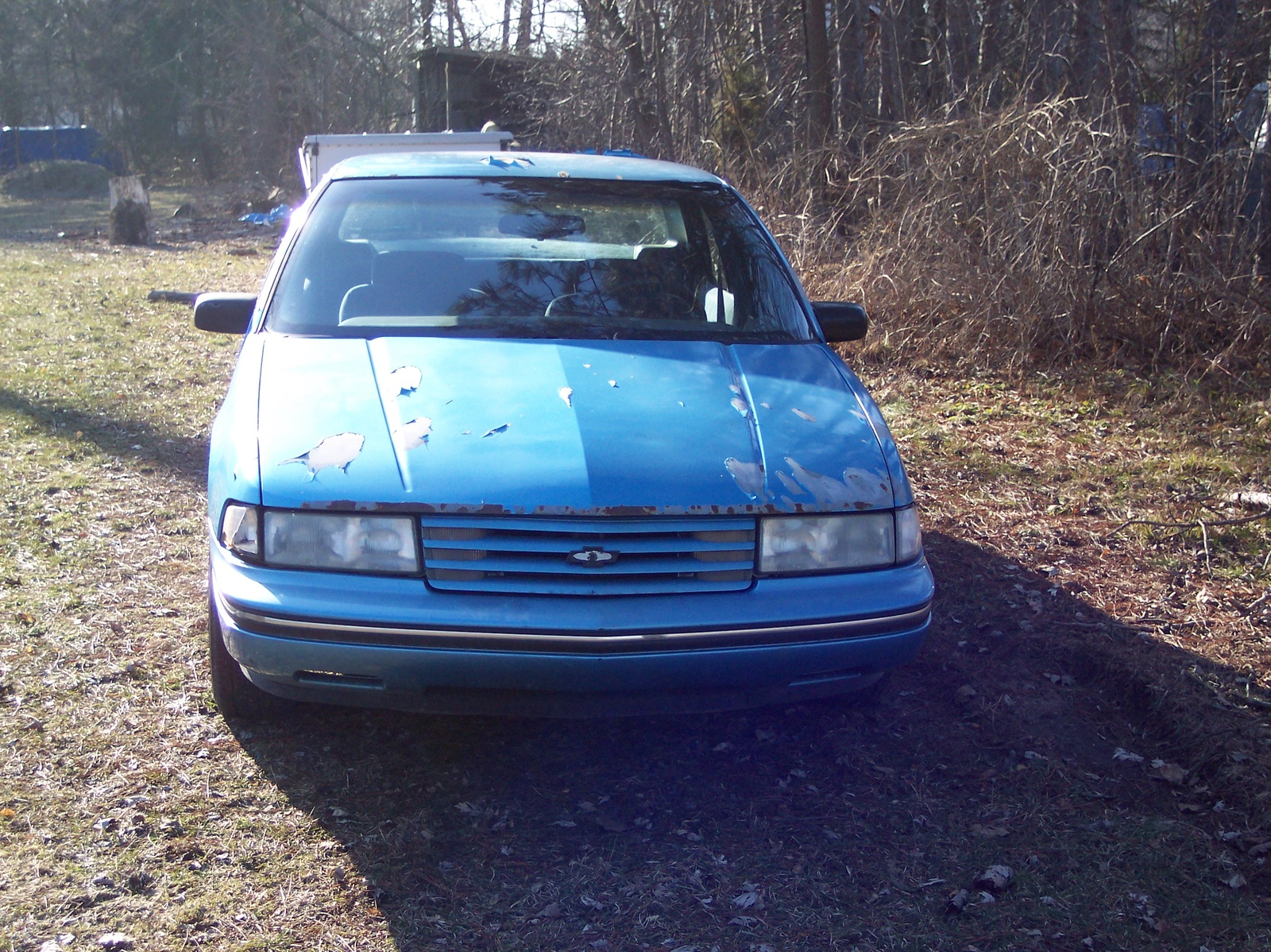 1993 Chevrolet Lumina picture