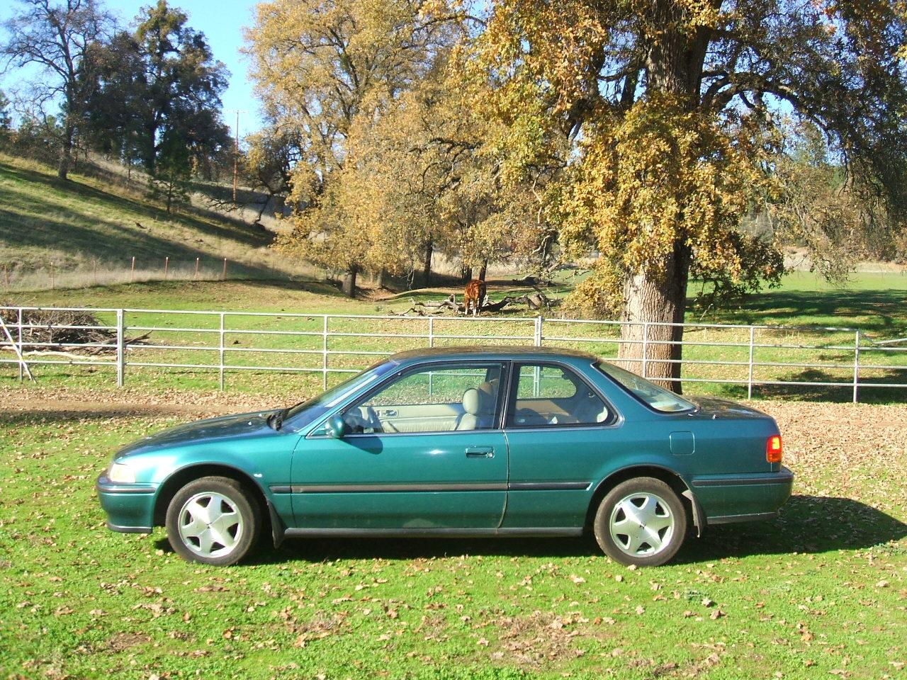 Accord Coupe 1987,Honda Accord Coupe2013,HondaAccord Coupe(第19页