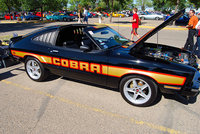 Picture of 1978 Ford Mustang Cobra II, exterior, engine