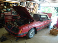 Picture of 1983 Ford Mustang, exterior, engine, gallery_worthy