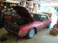 1983 Ford Mustang picture, exterior, engine