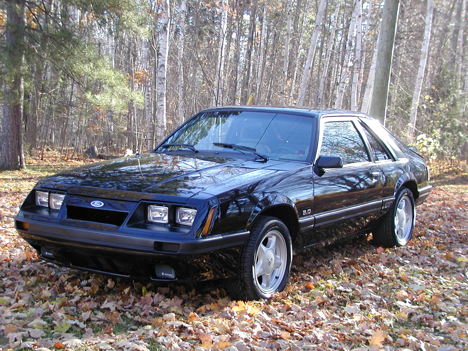 1985 Ford Mustang Pictures Cargurus