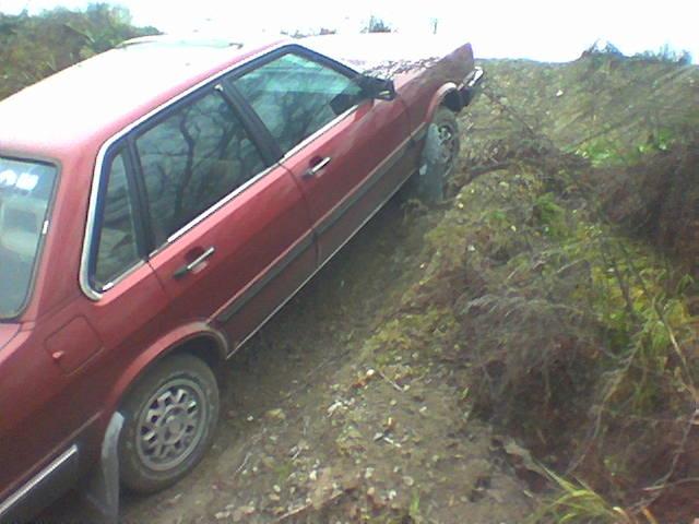 Picture of 1983 Audi 80, exterior