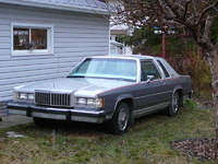 1985 Mercury Grand Marquis picture, exterior