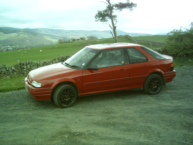 Picture of 1993 Rover 216