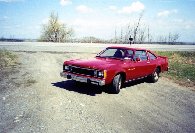 1980 Plymouth Road Runner, 1980 Plymouth Volare Roadrunner, exterior
