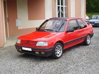 1991 Peugeot 309 Overview