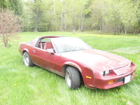 1985 Chevrolet Camaro Base, 1985 Chevrolet Camaro STD Coupe picture, exterior