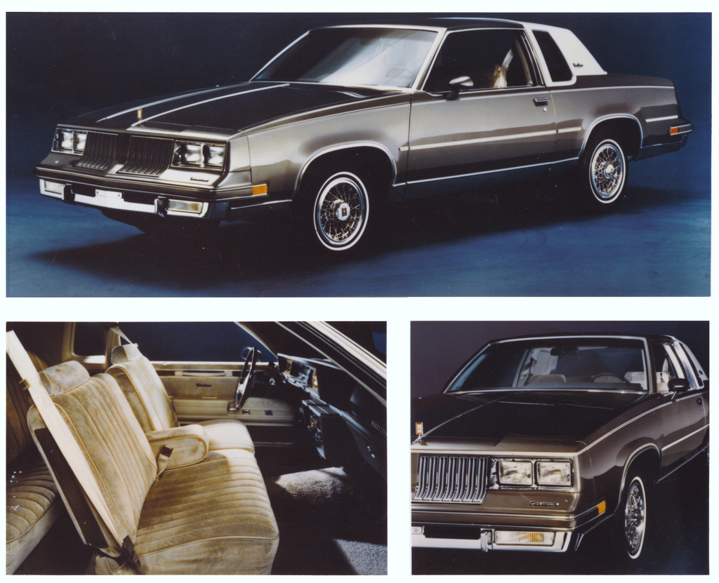Products i love on pinterest papasan chair chevy camaro for 1987 cutlass salon t tops