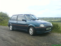 Picture of 1993 Rover Metro, exterior