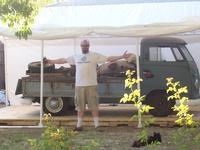 1960 Volkswagen Microbus Picture Gallery