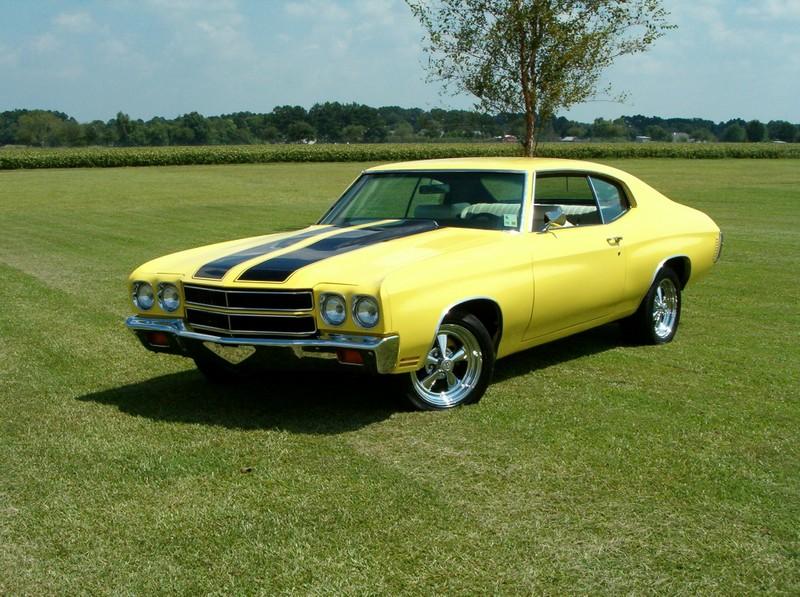 1975 Chevrolet Chevelle Overview Cargurus