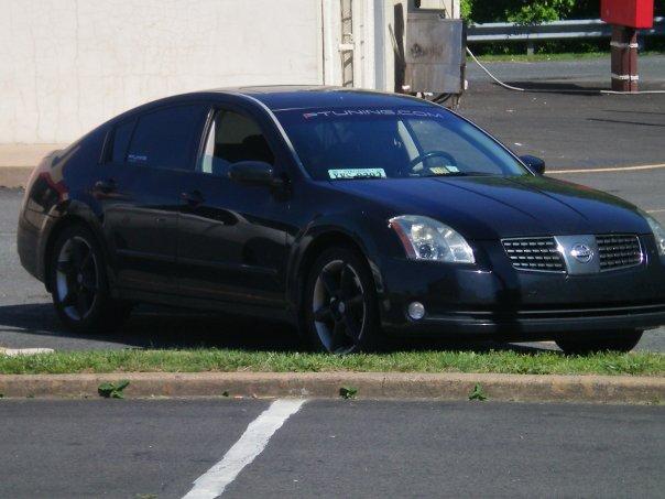 2004 Nissan Maxima SE picture, exterior