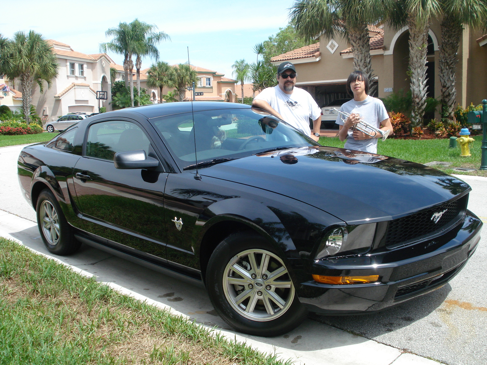 2009 ford mustang v6 convertible related infomation. Black Bedroom Furniture Sets. Home Design Ideas
