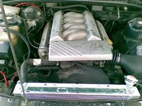 Picture of 1991 Holden Commodore, engine, gallery_worthy