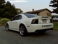 2003 Ford Mustang SVT Cobra 2 Dr Supercharged Coupe picture, exterior