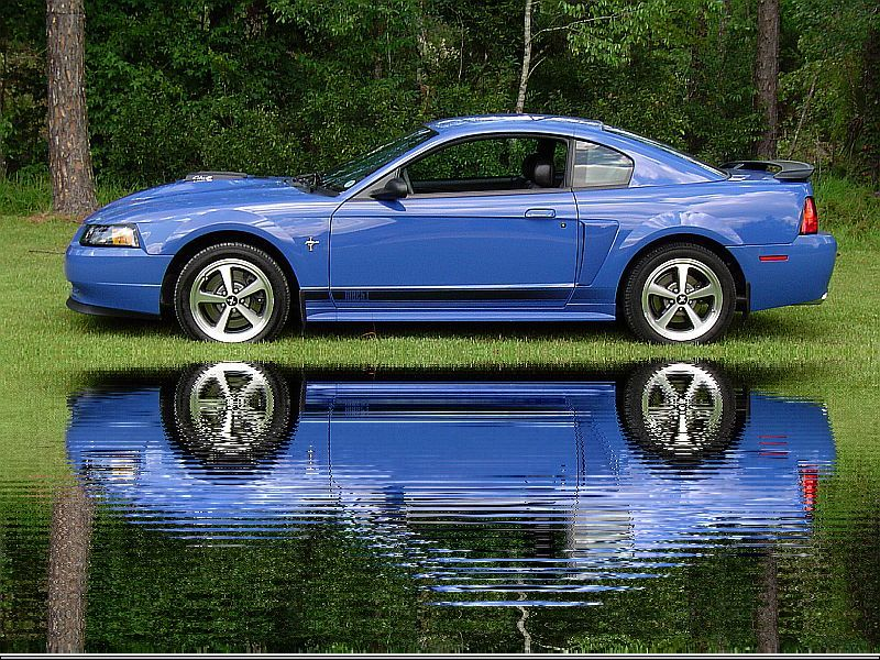 2003 ford mustang mach 1 automatic related infomation specifications weili automotive network. Black Bedroom Furniture Sets. Home Design Ideas