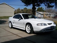 1998 Ford Mustang STD Coupe, 1998 Ford Mustang 2 Dr STD Coupe picture, exterior