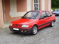 1989 Peugeot 309 Overview